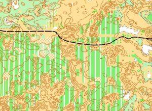 приклад карти Олешки
